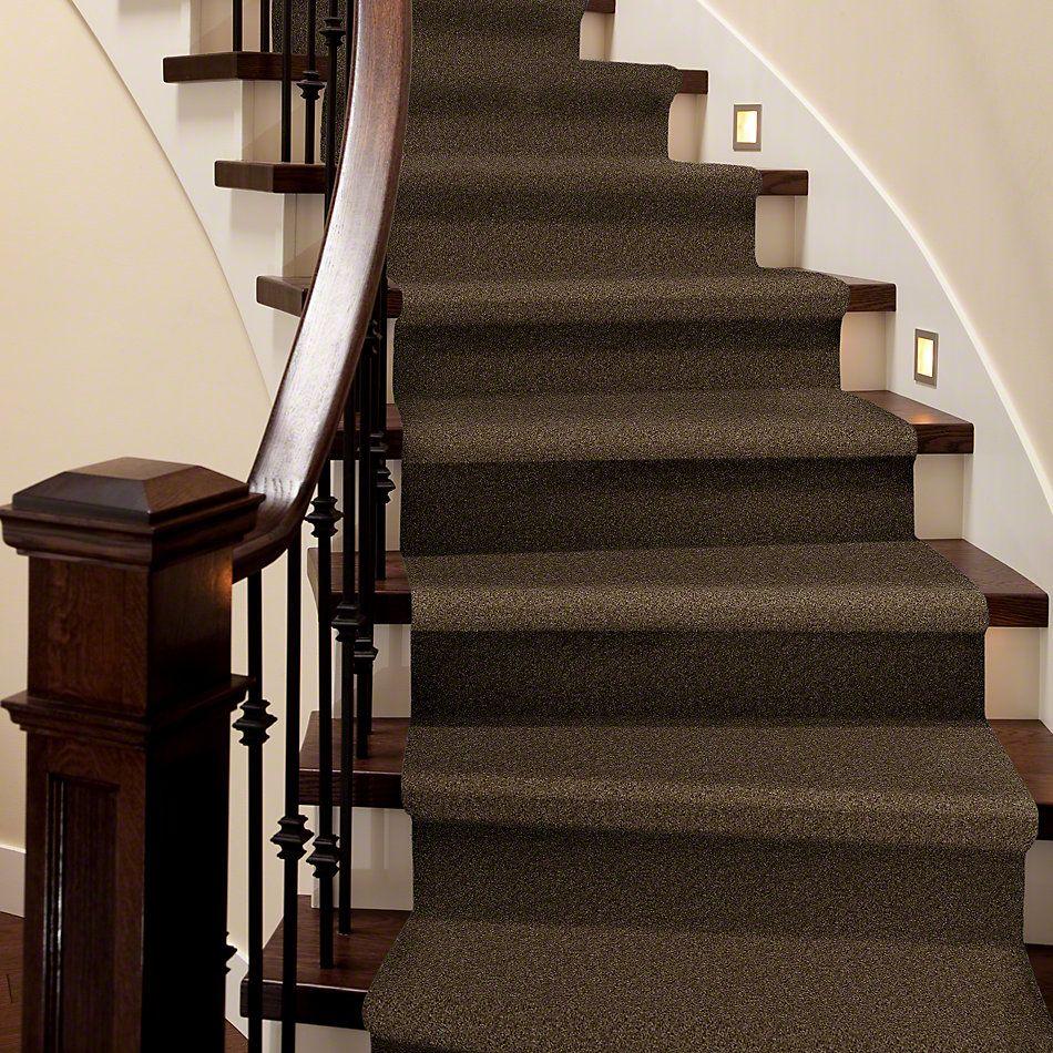 Shaw Floors SFA Weatherford Sage Leaf 00304_EA009