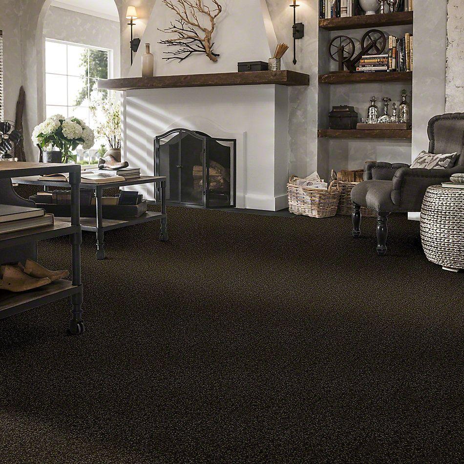 Shaw Floors SFA Versatile Design II Pine 00304_Q4689