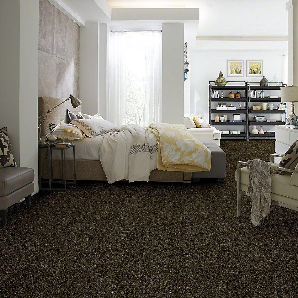 Shaw Floors Queen Versatile Design I 15′ Pine 00304_Q4784