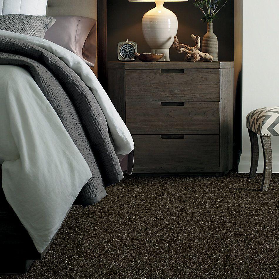 Shaw Floors Value Collections Passageway 3 Net Pine 00304_E9377