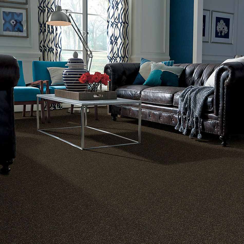 Shaw Floors Shaw Floor Studio Home News I 15′ Silken Moss 00304_FS129