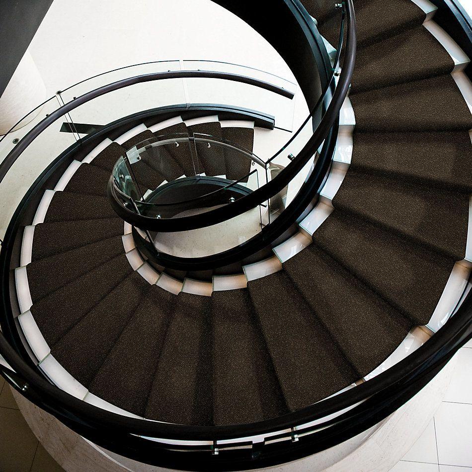 Shaw Floors Shaw Floor Studio Home News II 15′ Silken Moss 00304_FS131