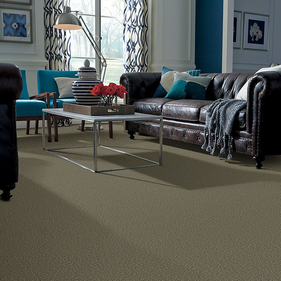 Shaw Floors Value Collections Sandy Hollow Cl III Net Alpine Fern 00305_5E511