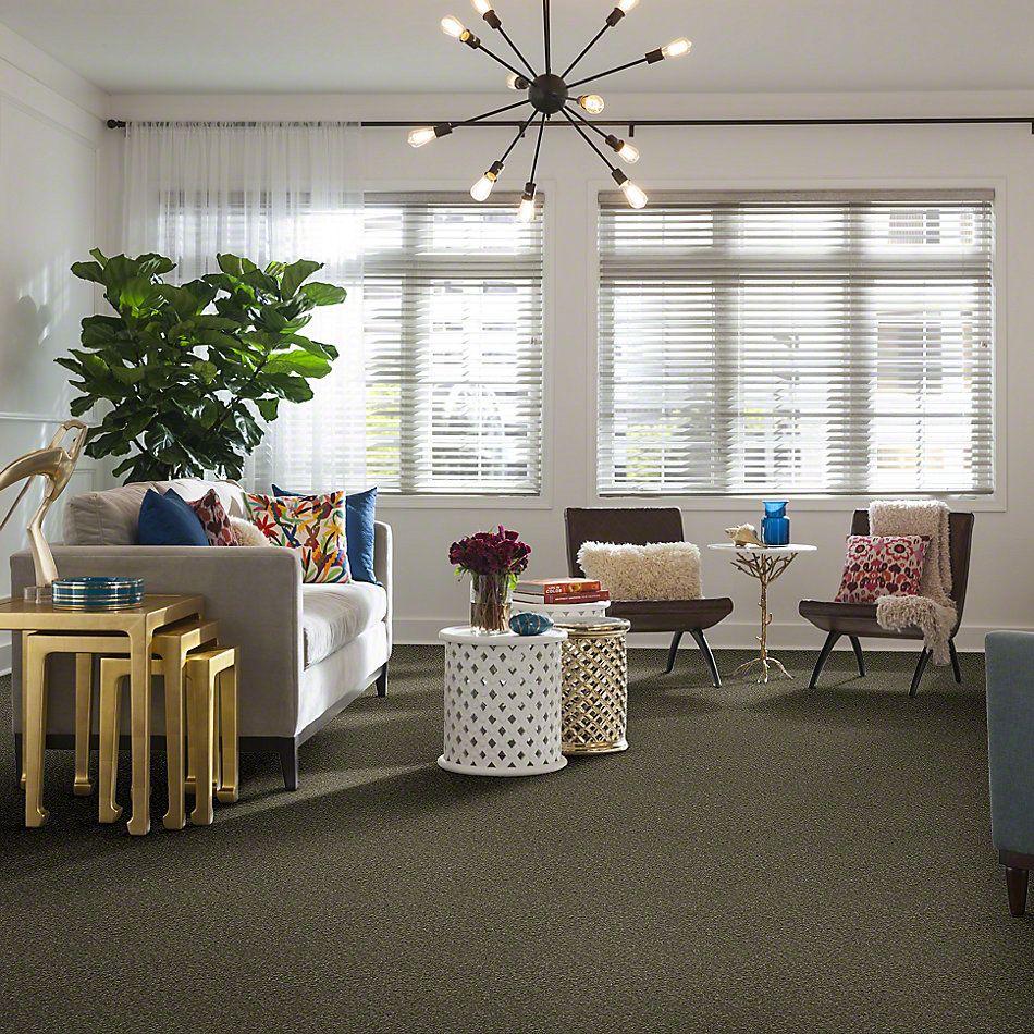 Shaw Floors Sandy Hollow I 12′ Alpine Fern 00305_Q4273