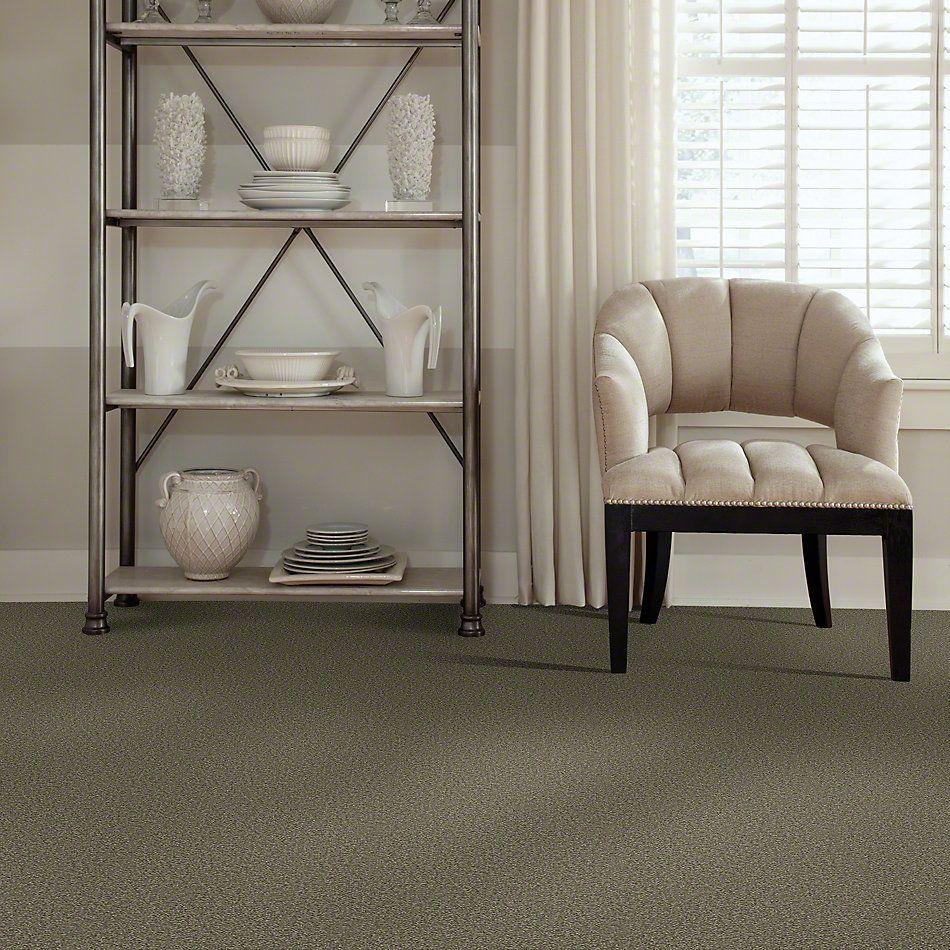 Shaw Floors Sandy Hollow III 12′ Alpine Fern 00305_Q4277