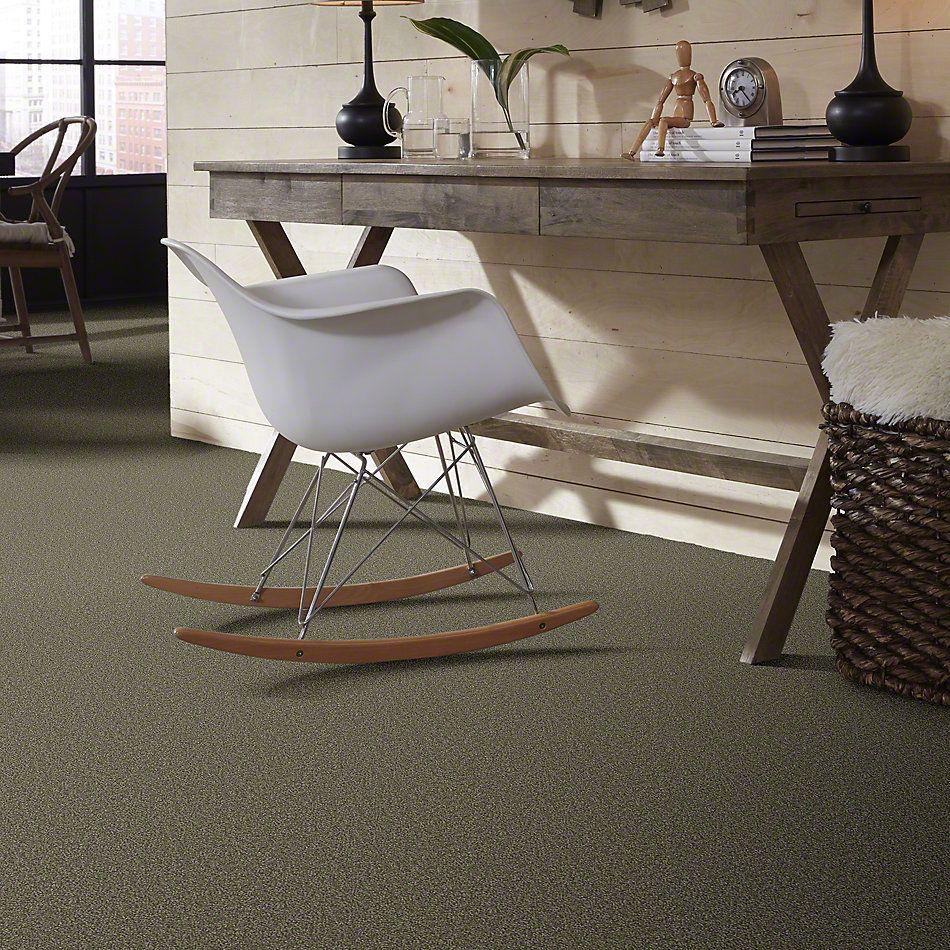 Shaw Floors Sandy Hollow III 15′ Alpine Fern 00305_Q4278