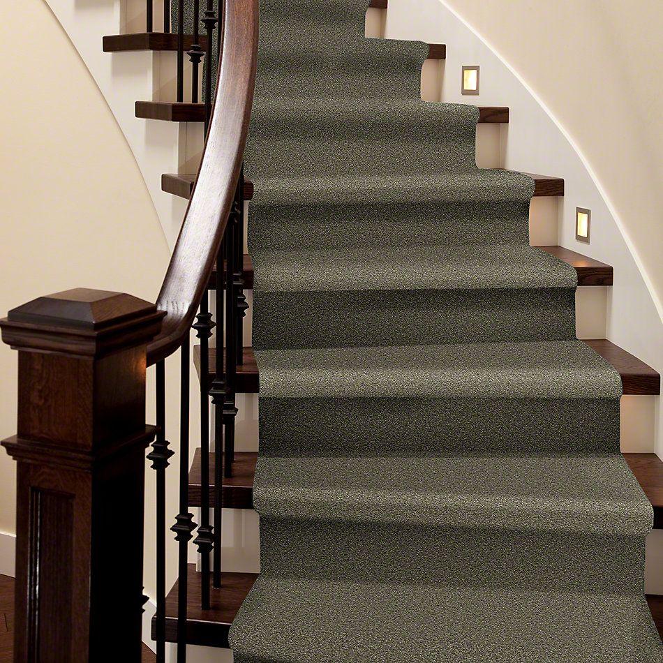 Shaw Floors SFA Timeless Appeal II 12′ Alpine Fern 00305_Q4312
