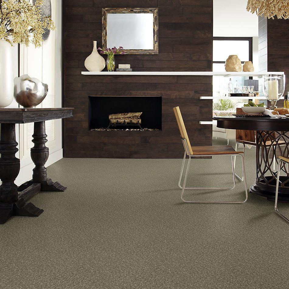 Shaw Floors Sandy Hollow Classic I 12′ Alpine Fern 00305_E0548