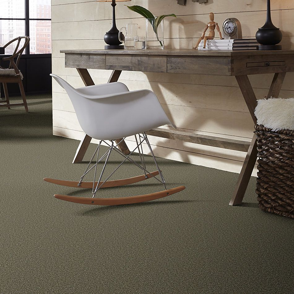 Shaw Floors Foundations Sandy Hollow Classic II 15′ Alpine Fern 00305_E0551