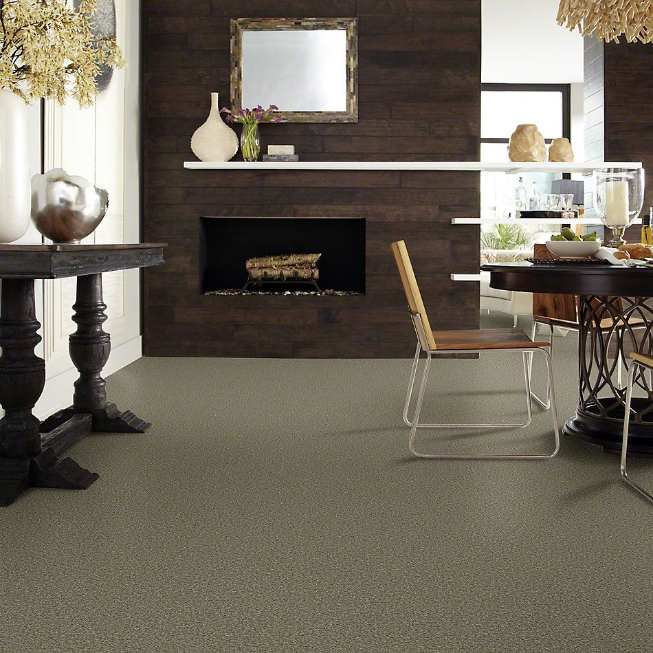 Shaw Floors Foundations Sandy Hollow Classic III 12′ Alpine Fern 00305_E0552