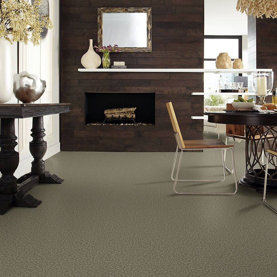 Shaw Floors Foundations Sandy Hollow Classic III 15′ Alpine Fern 00305_E0553