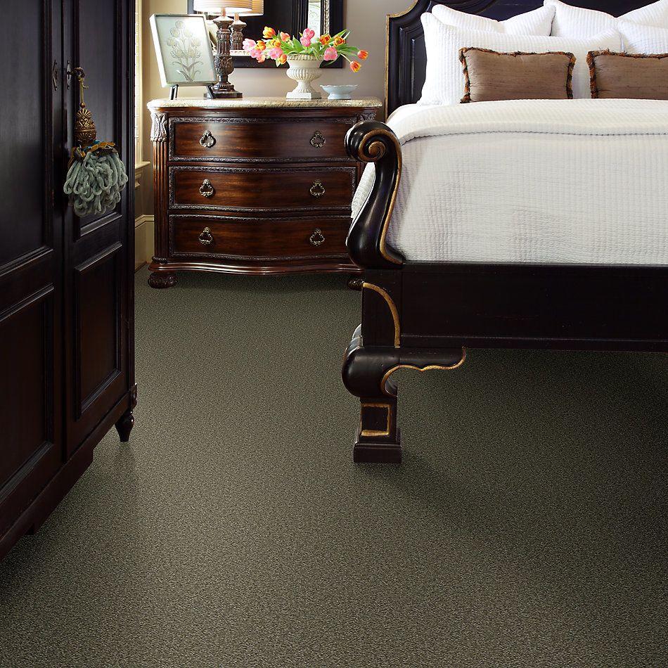 Shaw Floors Shaw Flooring Gallery Practical Magic 12′ Alpine Fern 00305_Q331G