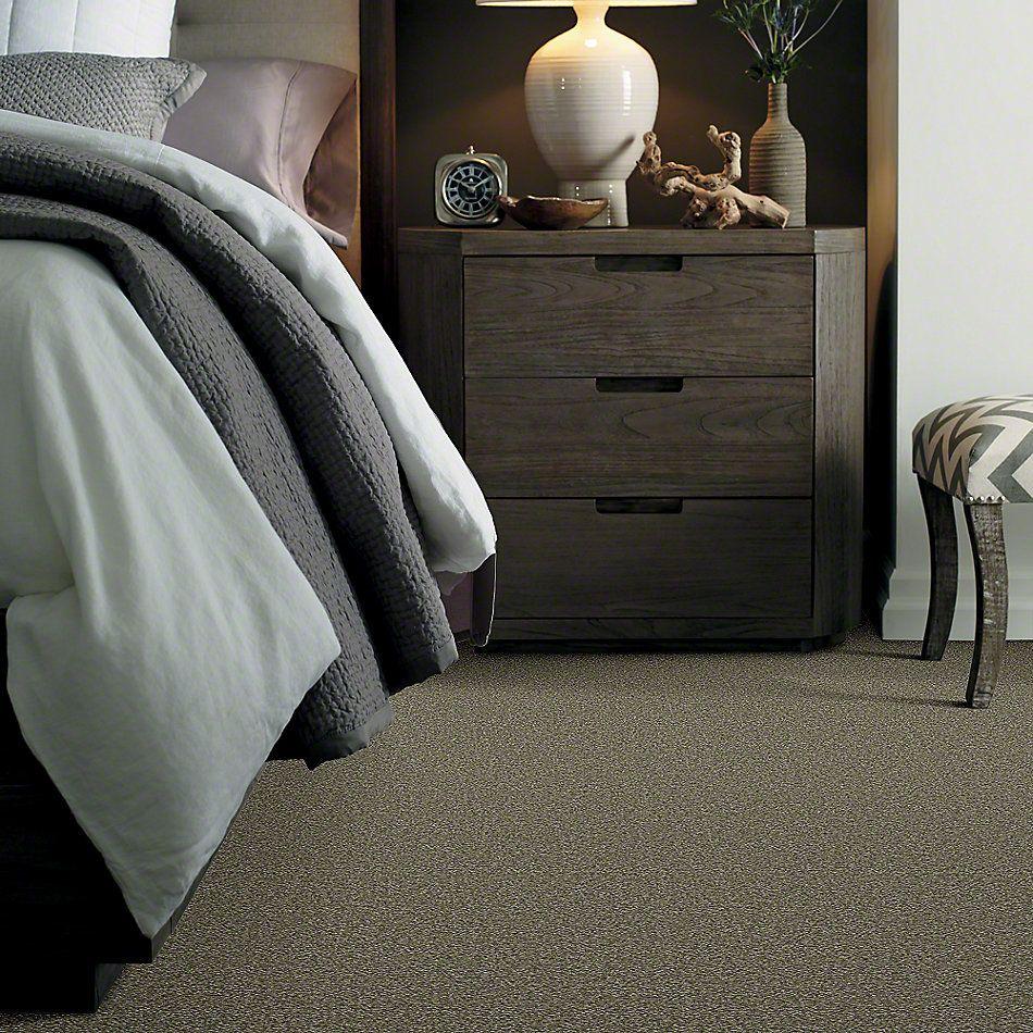 Shaw Floors Shaw Design Center Sweet Valley II 12′ Alpine Fern 00305_QC422
