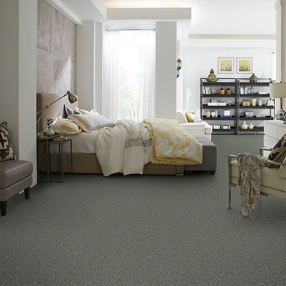 Shaw Floors Shaw Flooring Gallery Highland Cove III 15 Ocean View 00306_5224G