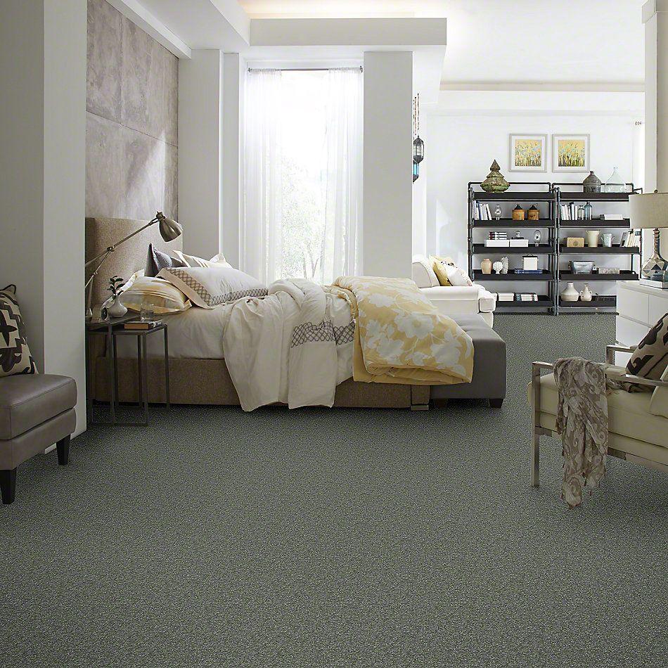 Shaw Floors SFA On Going III 15 Ocean View 00306_52S39