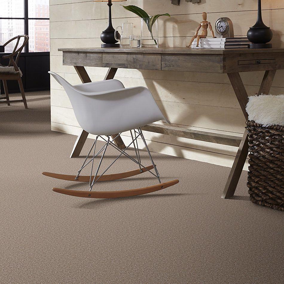 Shaw Floors Sandy Hollow Classic II 15′ Chinchilla 00306_E0551