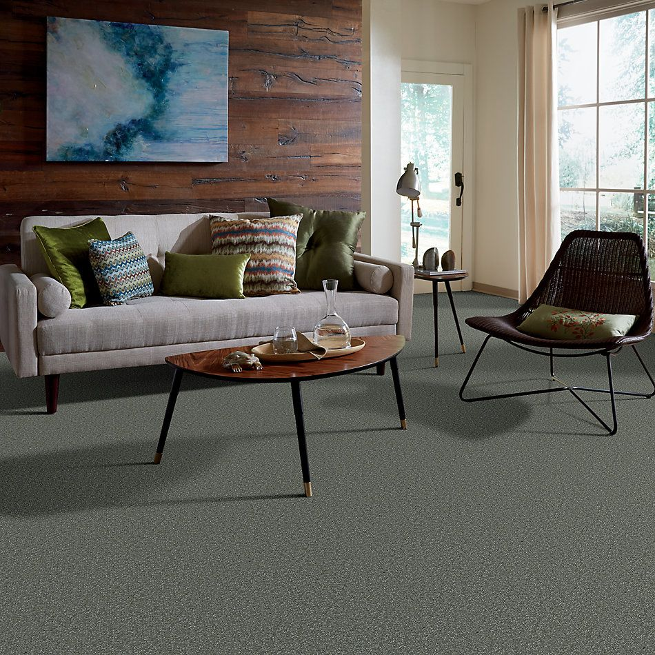 Shaw Floors Value Collections Passageway I 15 Net Ocean View 00306_E9620