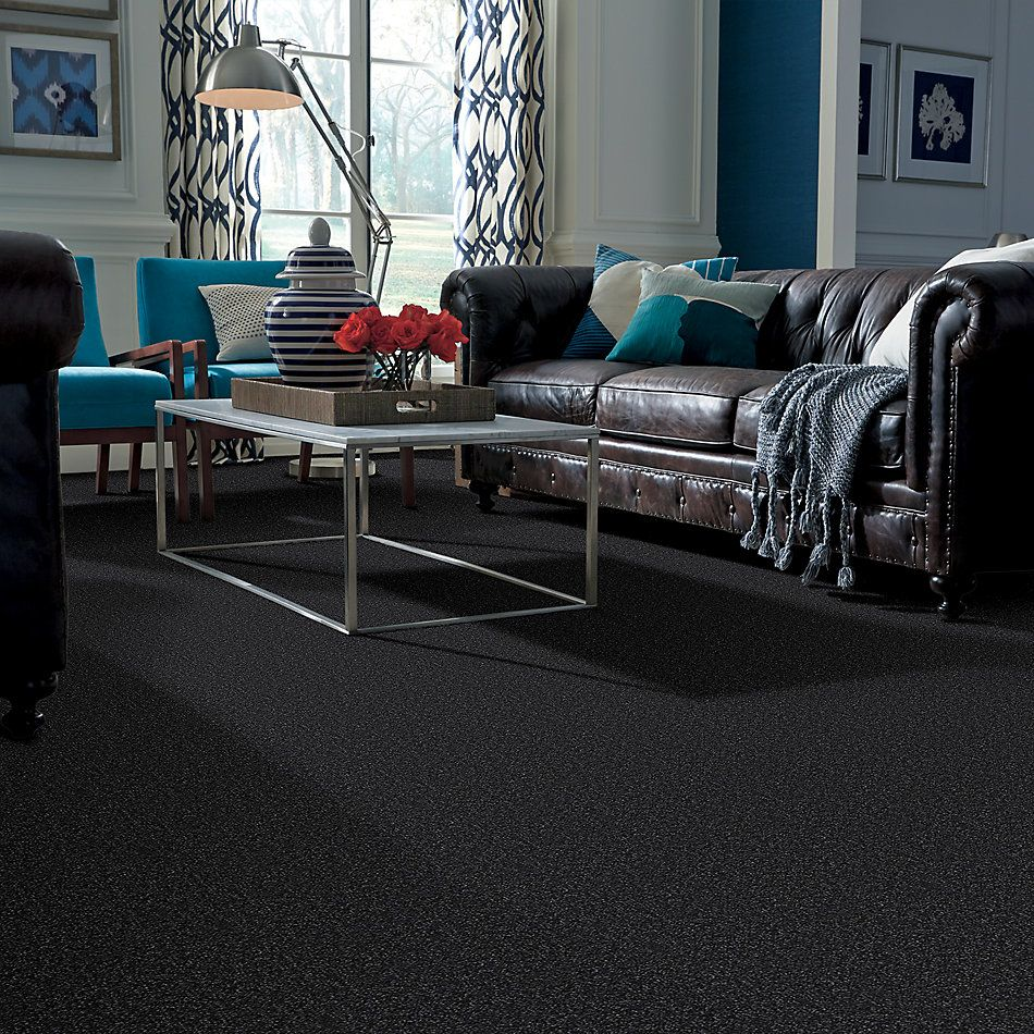 Shaw Floors Value Collections Passageway I 15 Net Blue Spruce 00307_E9620