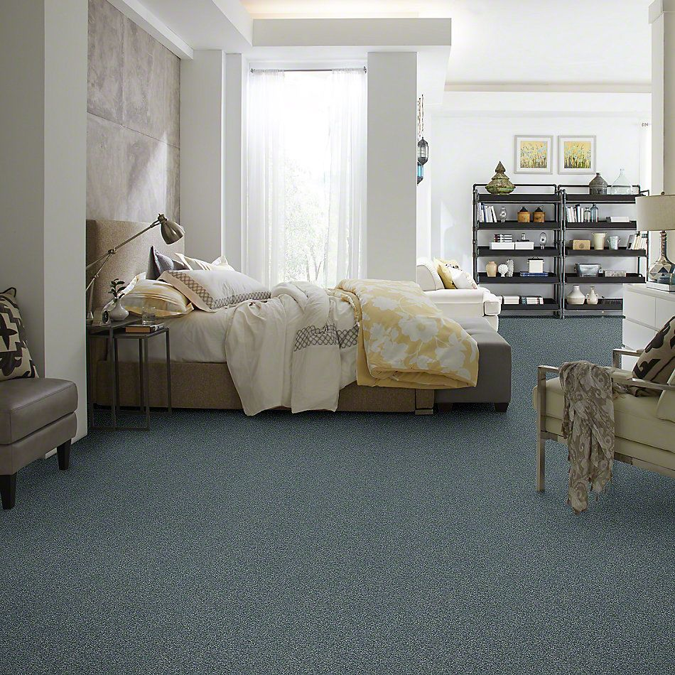 Shaw Floors Bellera Just A Hint II Blue Wing 00310_E9641