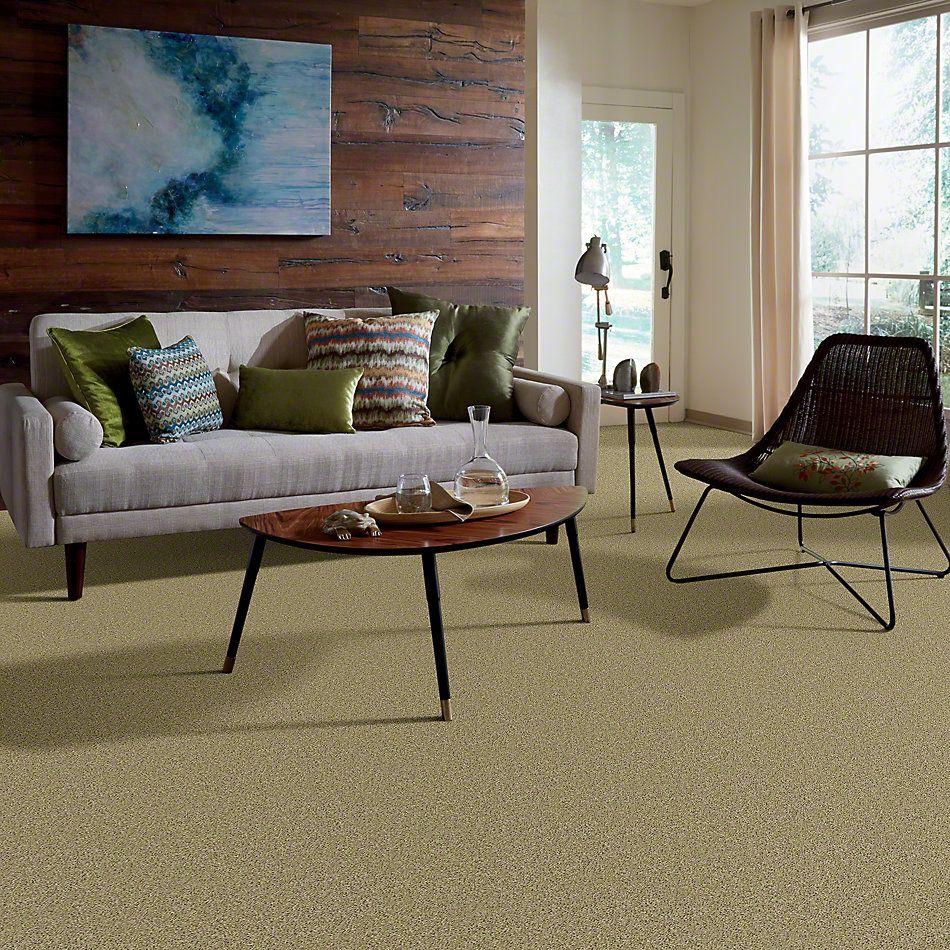 Shaw Floors Thunder Struck (s) Shagreen 00310_E0272