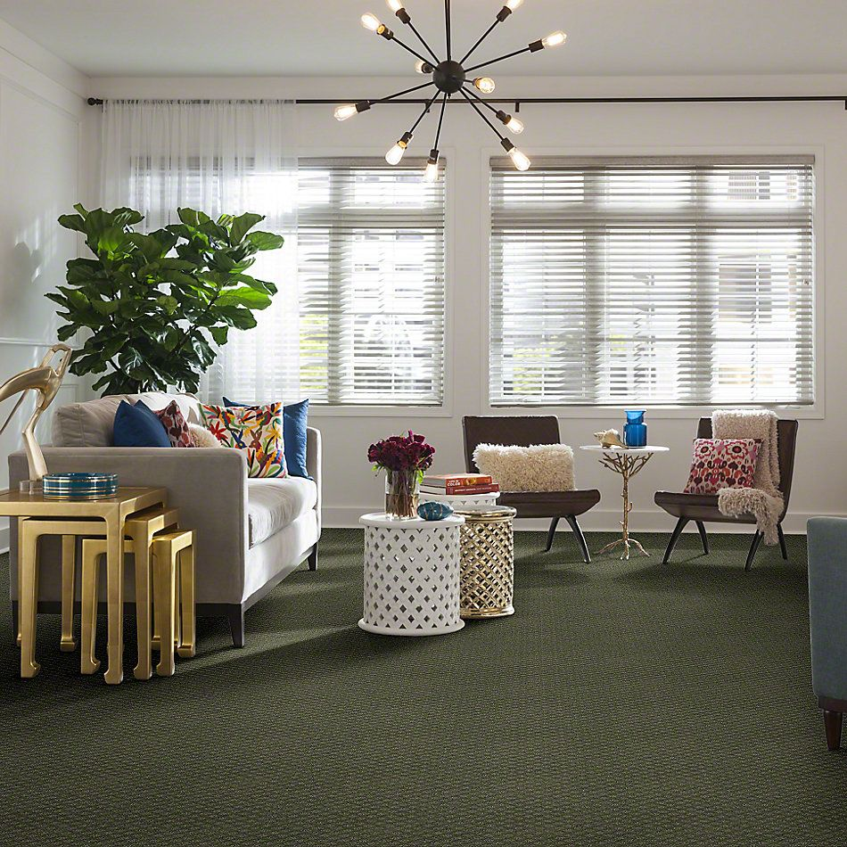 Shaw Floors Pace Setter Silver Sage 00310_E0527