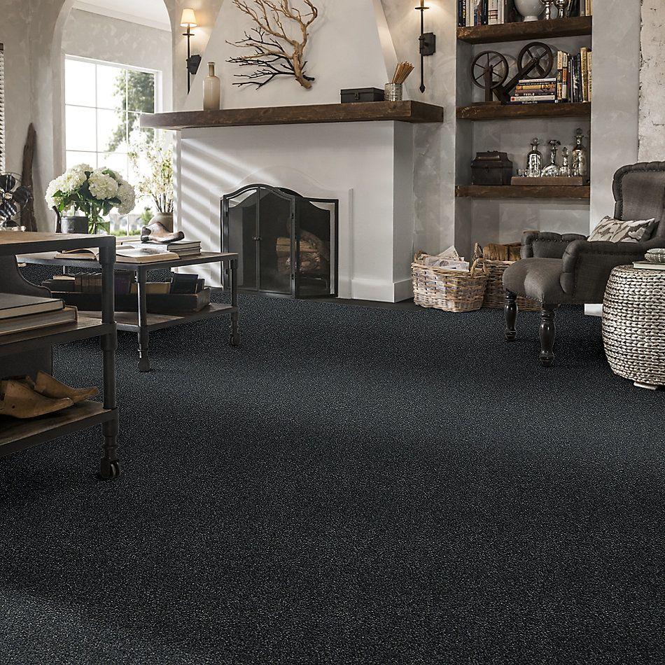 Shaw Floors Bellera Points Of Color II Net Blue Wing 00310_E9786