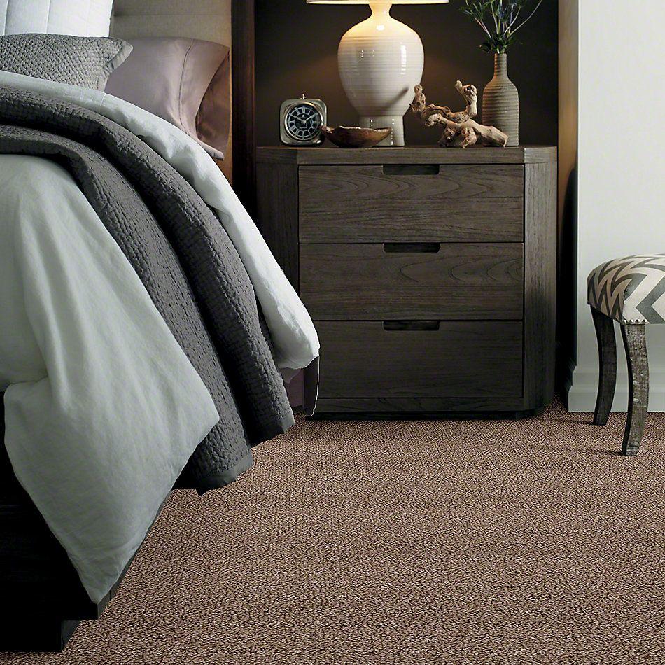 Shaw Floors Traditional Elegance Log Cabin 00311_52P13