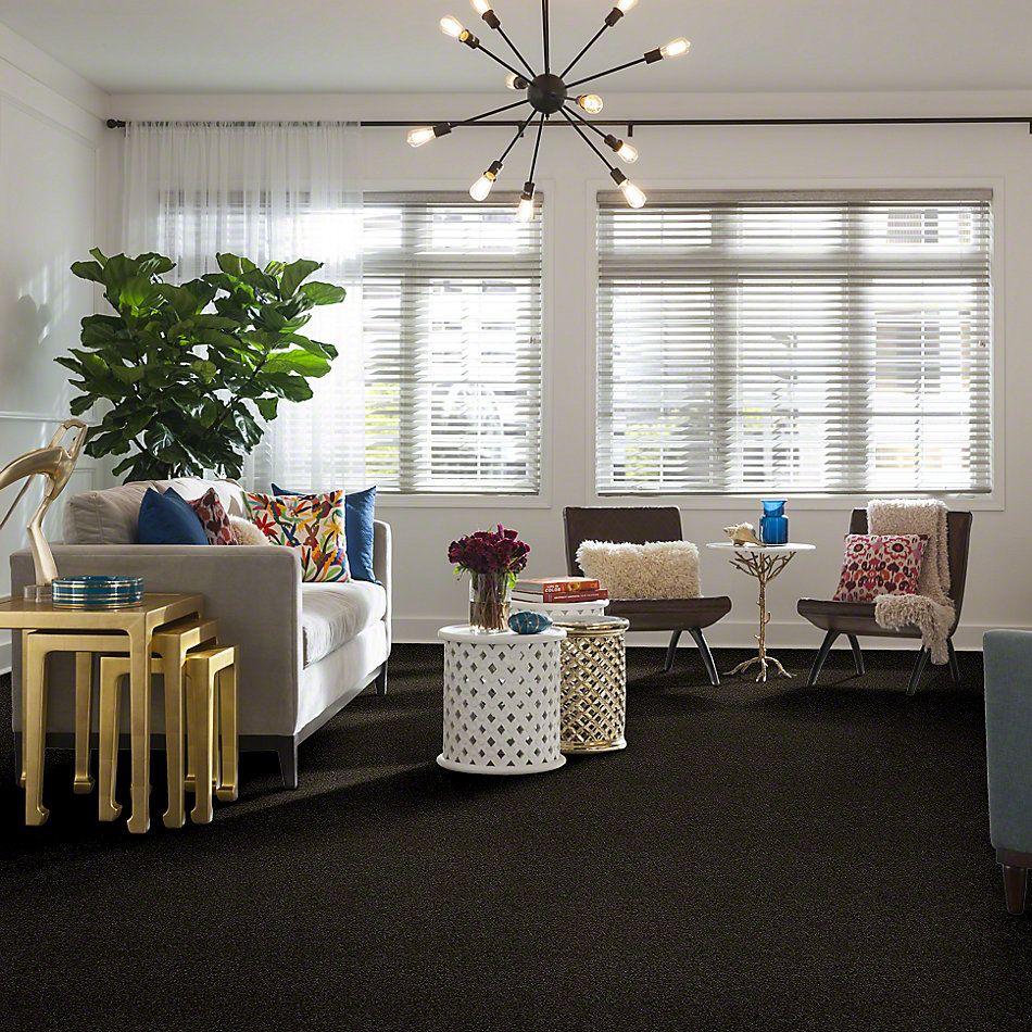 Shaw Floors Shaw Design Center Best Basics Garden Retreat 00311_5C728