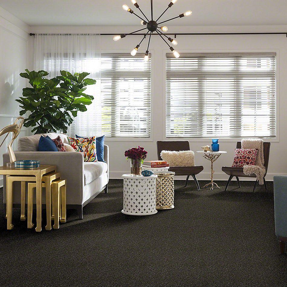 Shaw Floors SFA Inspiring Garden Retreat 00311_EA508