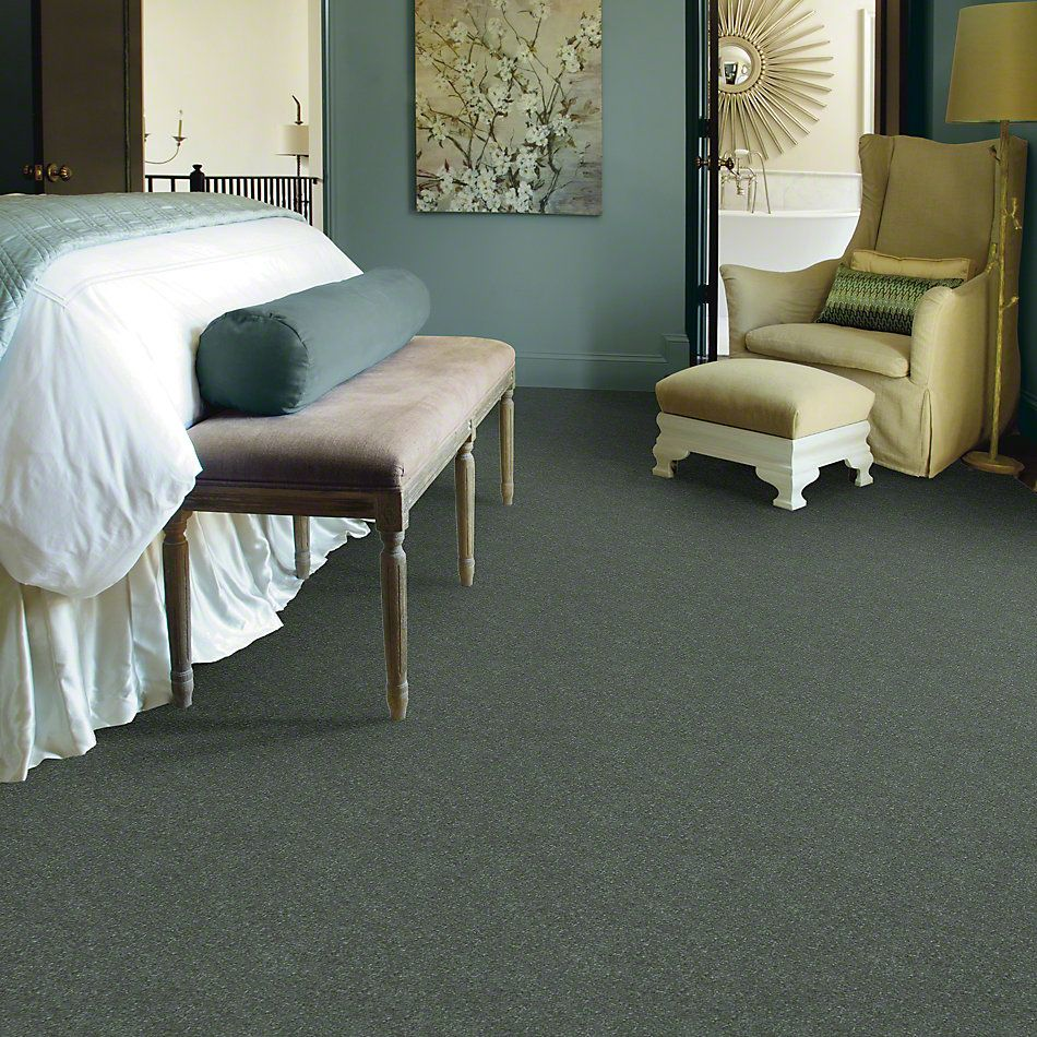 Shaw Floors Roll Special Xv436 Spruce 00311_XV436