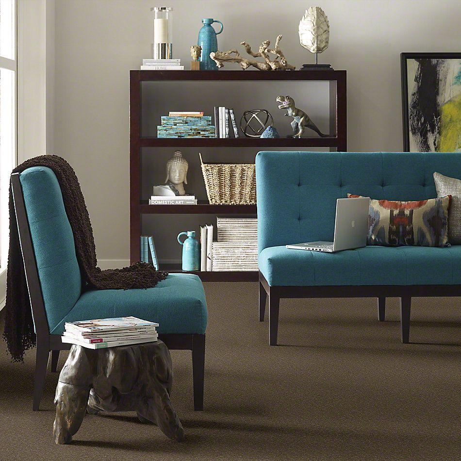 Shaw Floors Everyday Comfort (s) Woodland Moss 00312_52P07
