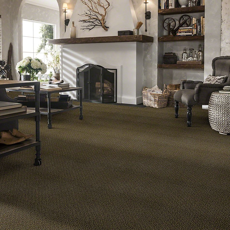 Shaw Floors Traditional Elegance Woodland Moss 00312_52P13