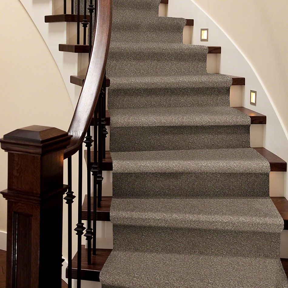 Shaw Floors Roll Special Xv540 Olive Grove 00320_XV540