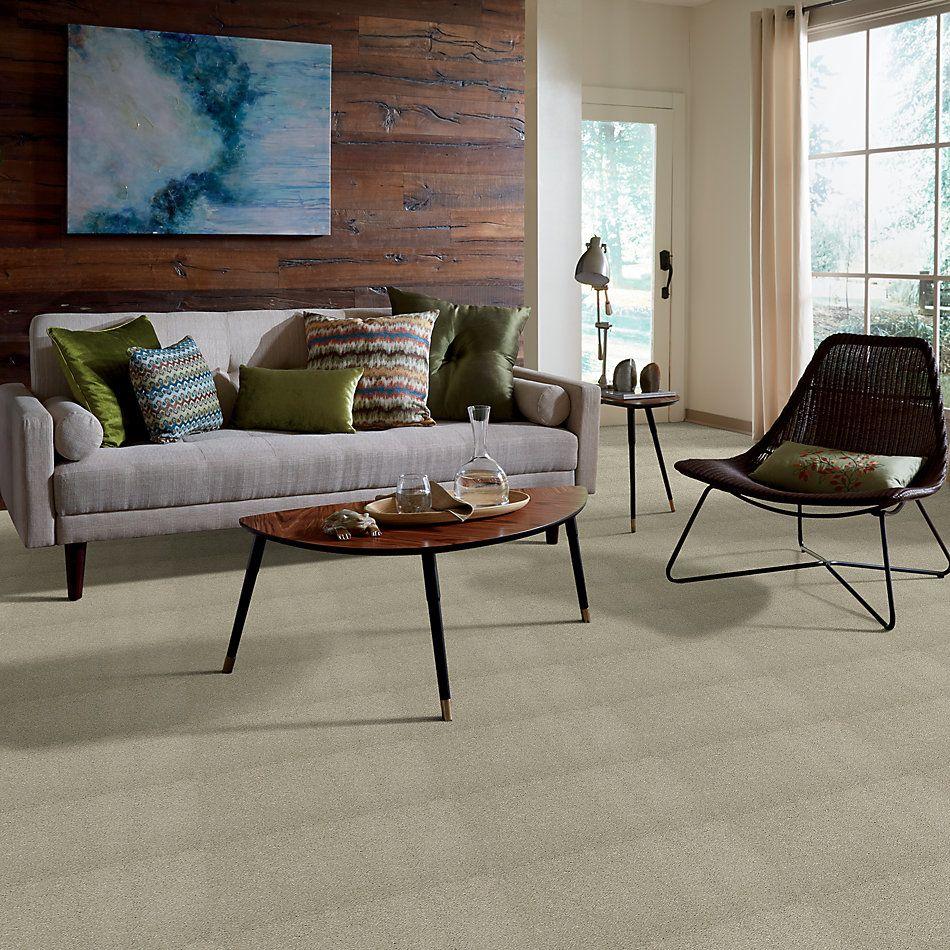 Shaw Floors Caress By Shaw Cashmere I Lg Spruce 00321_CC09B