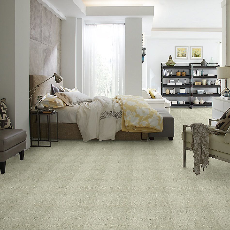 Shaw Floors Value Collections Cashmere III Lg Net Celadon 00322_CC49B