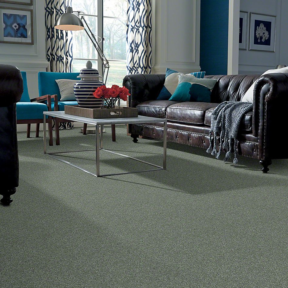 Shaw Floors Caress By Shaw Cashmere Classic I Jade 00323_CCS68