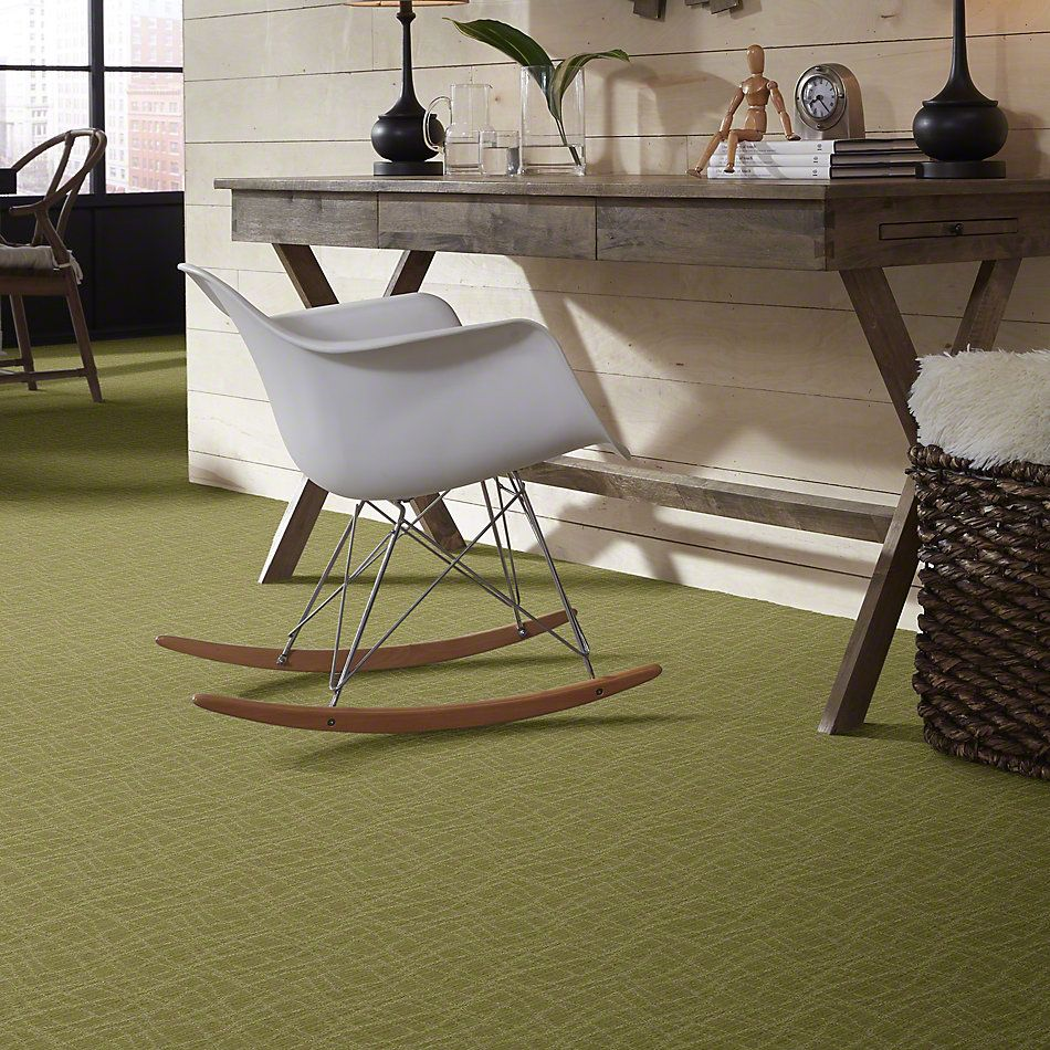 Anderson Tuftex Shaw Design Center Exclusive Style Fresh Grown 00324_869SD