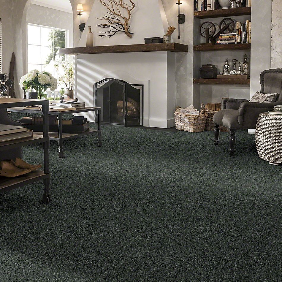 Shaw Floors Caress By Shaw Quiet Comfort Classic I Emerald 00324_CCB96