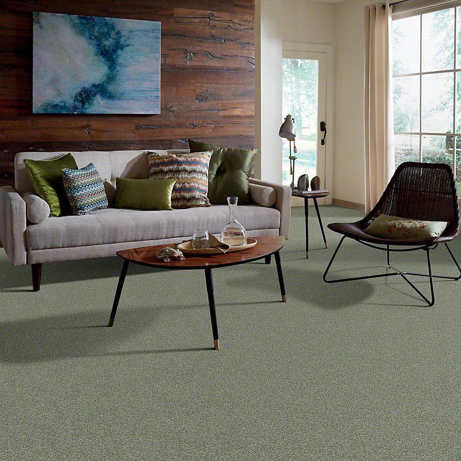Shaw Floors Anso Colorwall Platinum Twist Ming Dynasty 00330_EA576