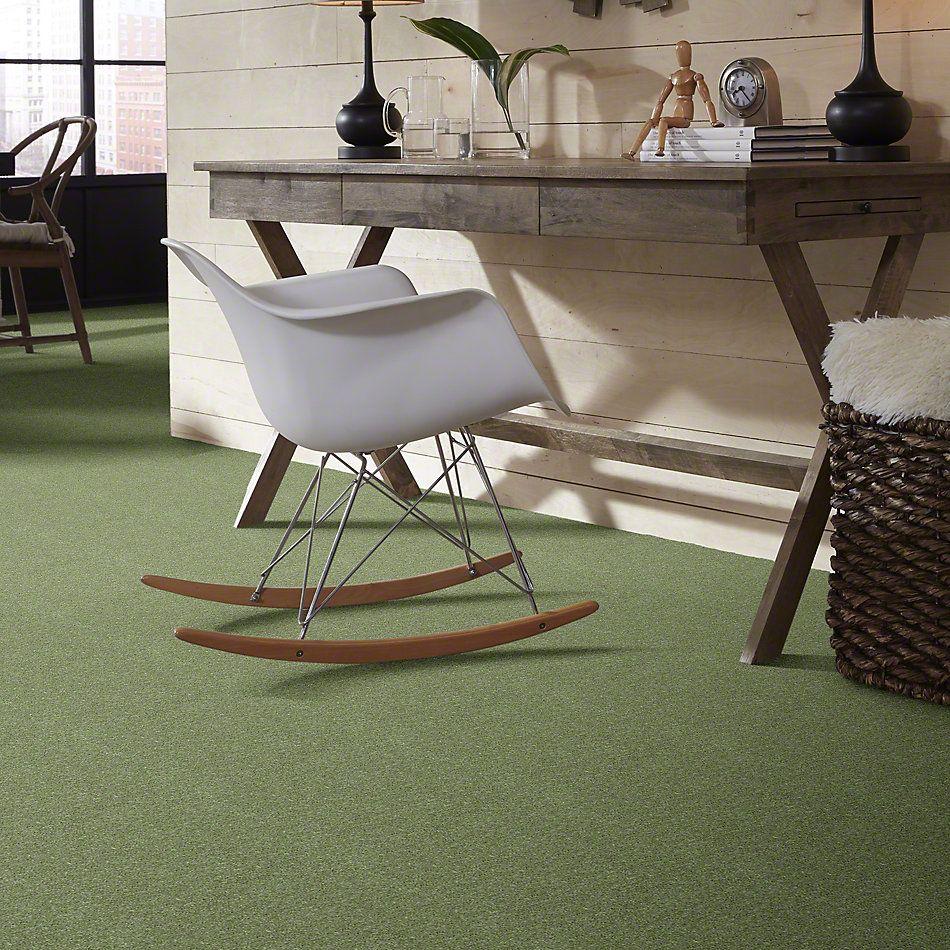 Shaw Floors Newbern Classic 15′ Going Green 00330_E0950