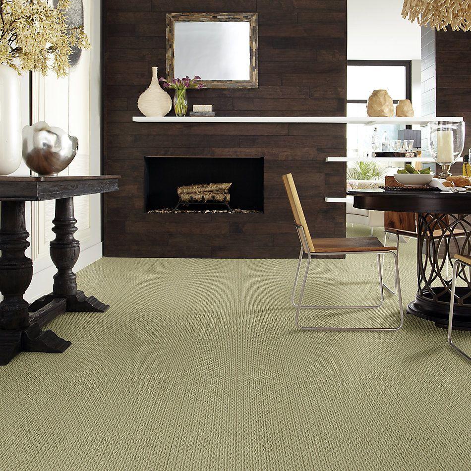 Anderson Tuftex American Home Fashions Proud Design Jasper 00332_ZA883