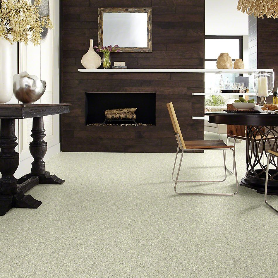 Shaw Floors Anso Colorwall Platinum Twist Norway 00335_EA576
