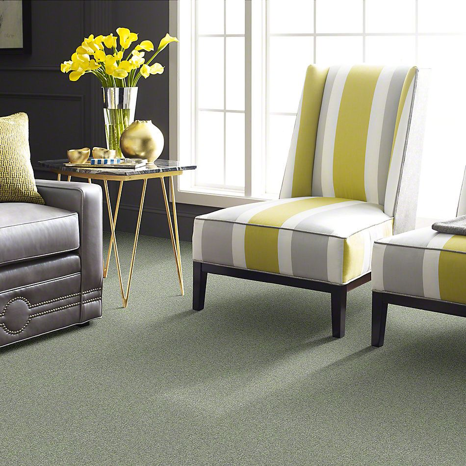Shaw Floors Anso Colorwall Titanium Texture Norway 00335_EA709