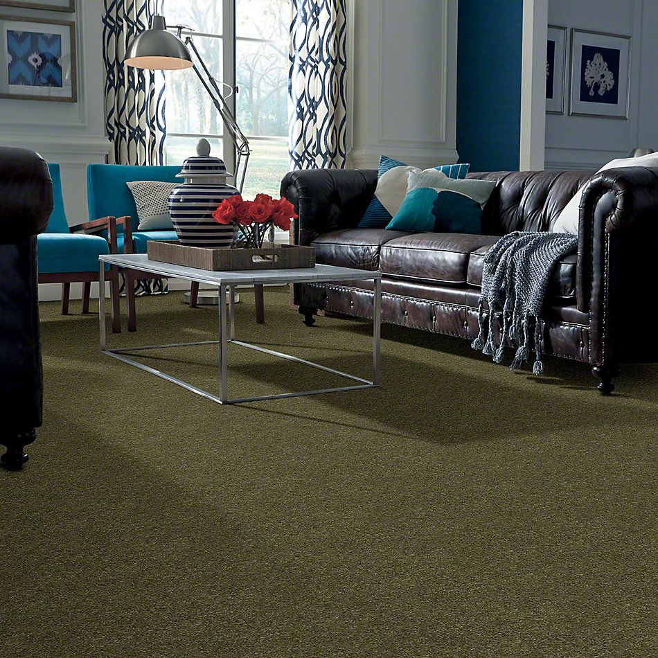 Anderson Tuftex Ravishing New Willow 00335_Z6866