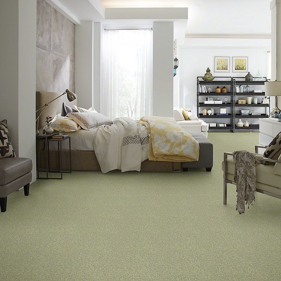 Shaw Floors Anso Colorwall Gold Texture Ireland 00336_EA571