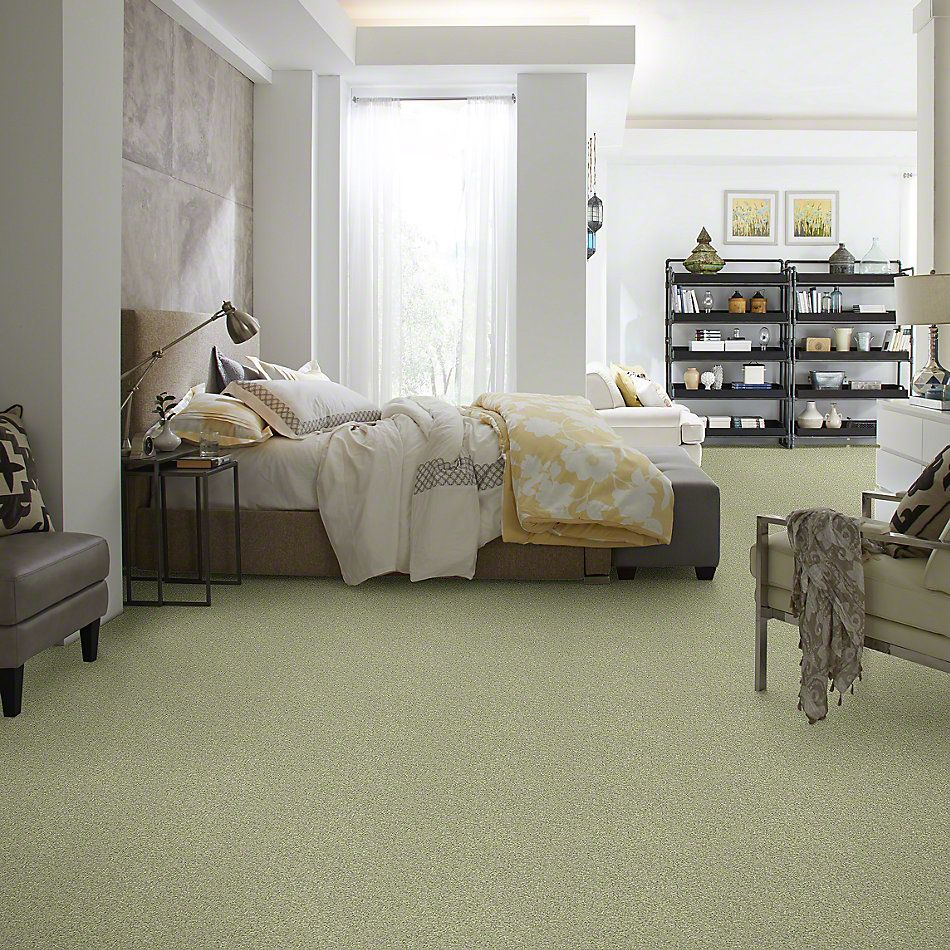 Shaw Floors Anso Colorwall Platinum Texture 12′ Ireland 00336_EA572