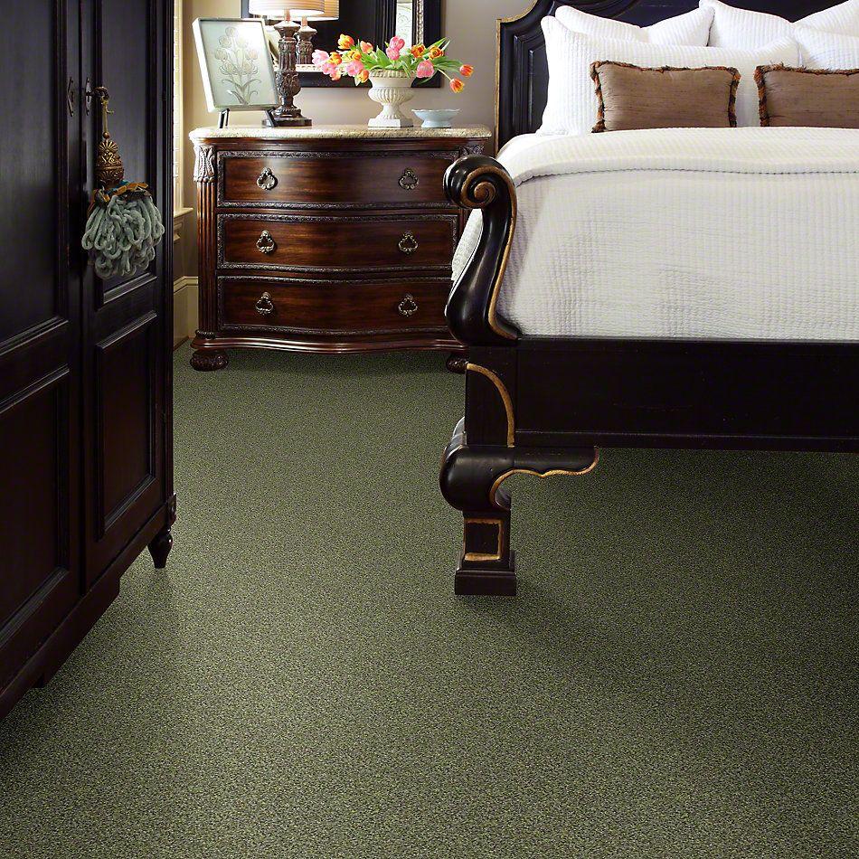 Shaw Floors Anso Colorwall Platinum Twist Ireland 00336_EA576