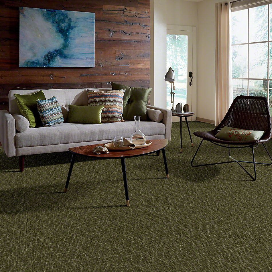 Anderson Tuftex Twist Cocktail Olive 00336_Z6869