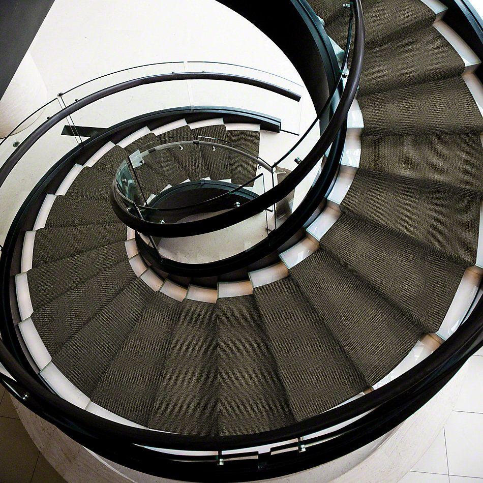 Anderson Tuftex Shaw Design Center Grand Appeal Laurel 00338_882SD