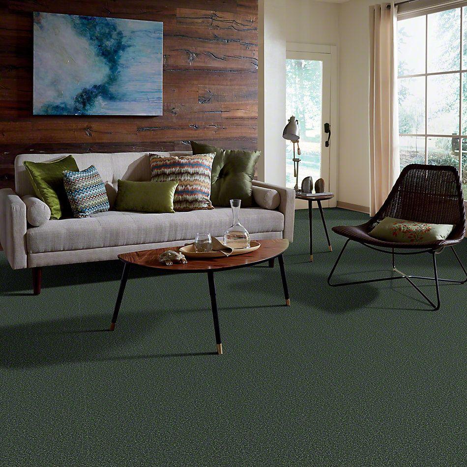 Shaw Floors All Star Weekend III 15′ Going Green 00340_E0146